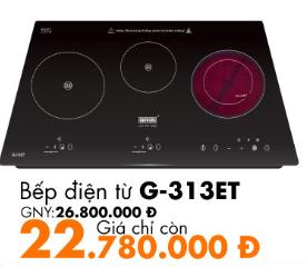 g-313et
