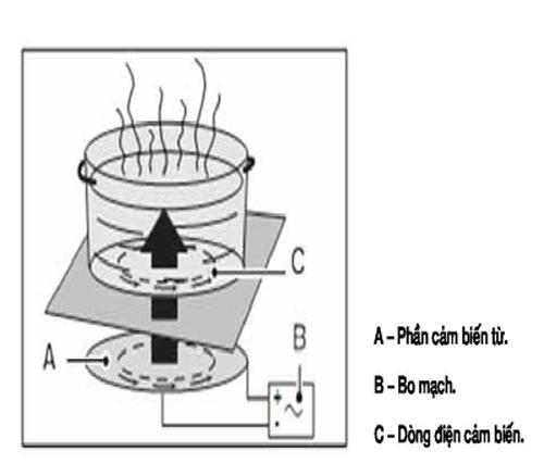 Bếp điện từ hoạt động như thế nào