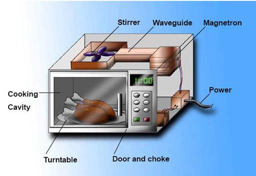 Lò vi sóng đối lưu là gì