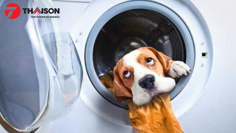Tìm hiểu tốc độ quay của máy giặt